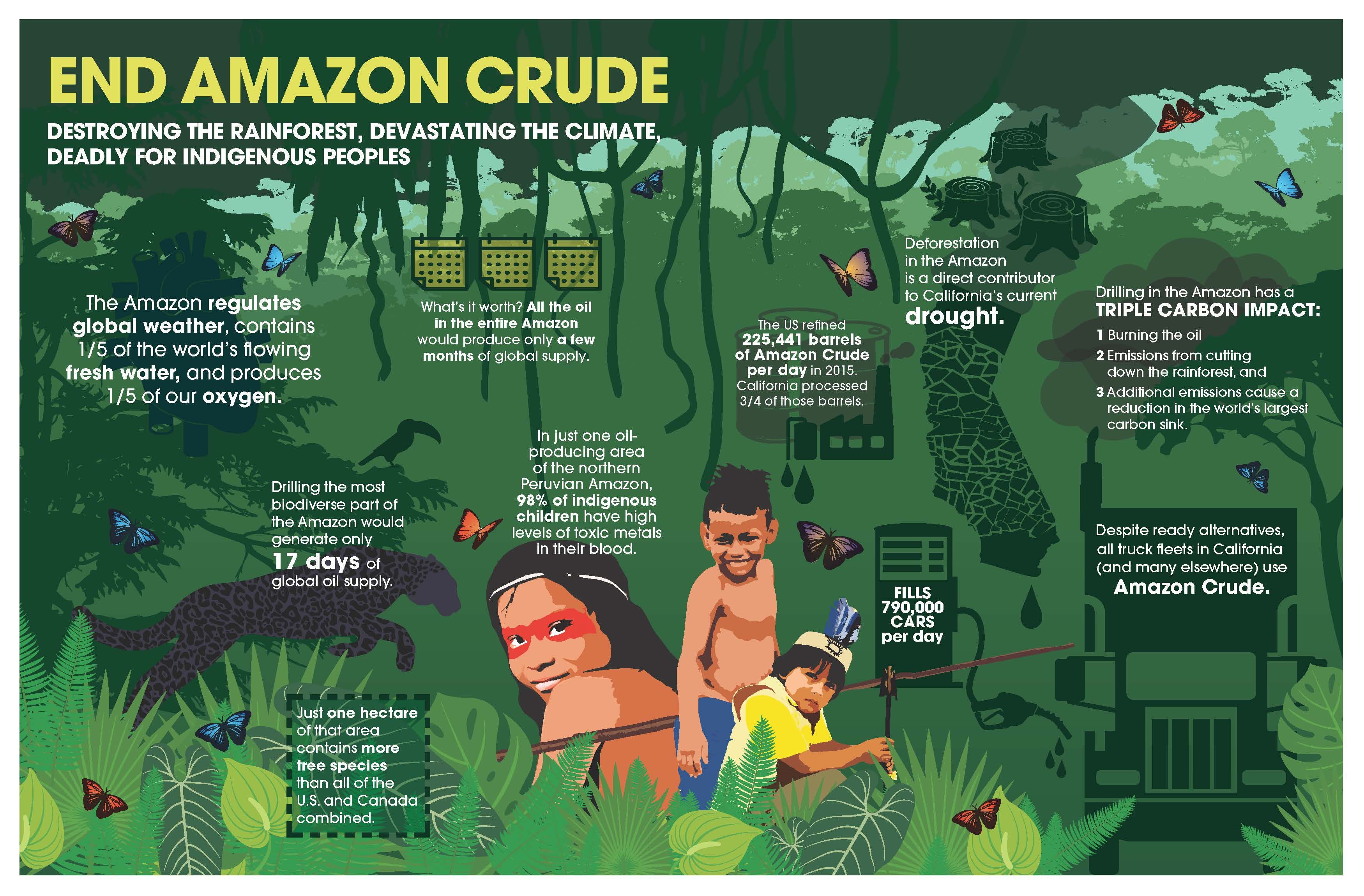 2016-amazon-crude-infographic