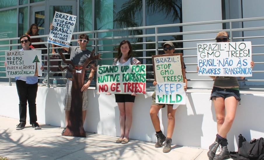 FL GE Trees Brazil protest people