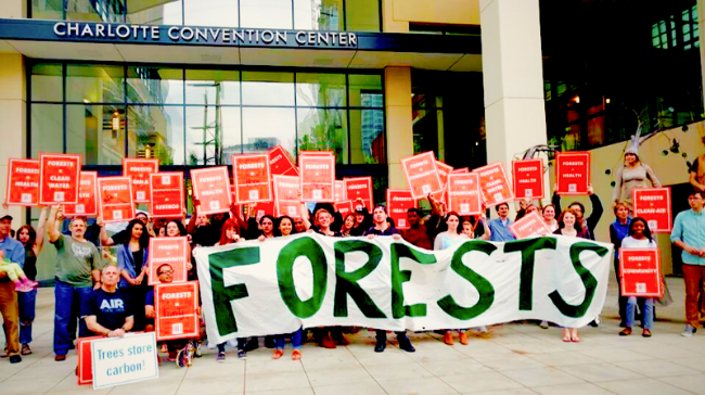 Stand Tall with Forests Convention Center 450