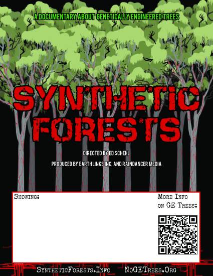 synth forests 8X10 j