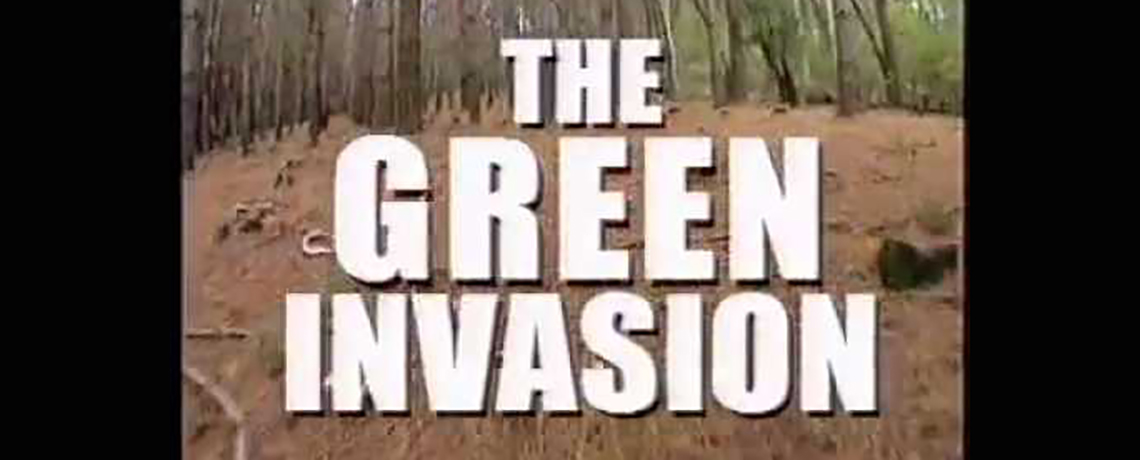 WATCH: Green Invasion – Documentary on Forest Monocultures