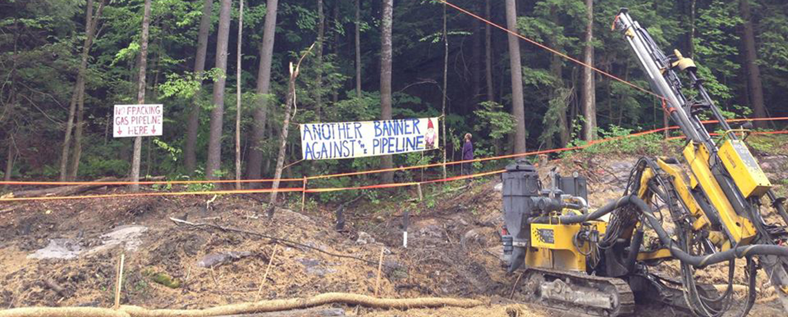 Tree-Sit Stops Pipeline Construction For Second Time In Three Days