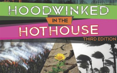 TOMORROW: Hoodwinked in the Hothouse Webinar: Examining False Corporate Schemes being advanced through the Paris Agreement