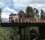 Mapuche bridge