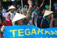 Bali Action