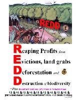 IEN REDD REPORT