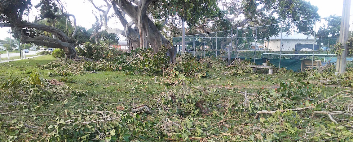 GJEP report and photos from the front lines of Irma