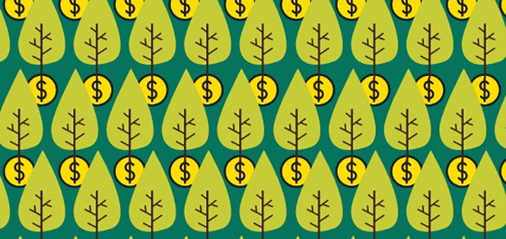 Earth Minute: The Trillion Tree Planting Scheme, A Particular Kind of Lunacy