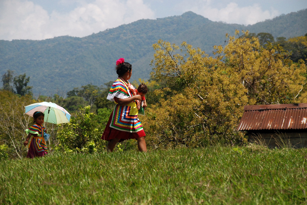 Indigenous Peoples Key to Saving Threatened Forests