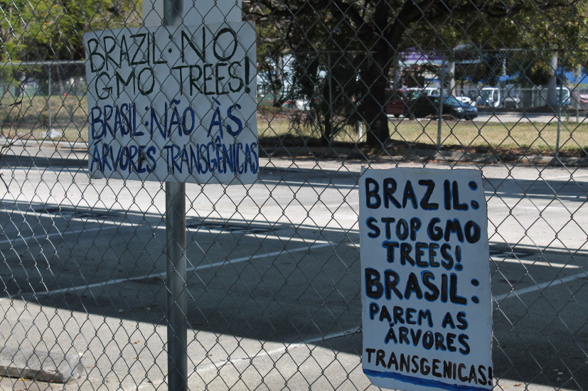 FL GE Trees Brazil Protest