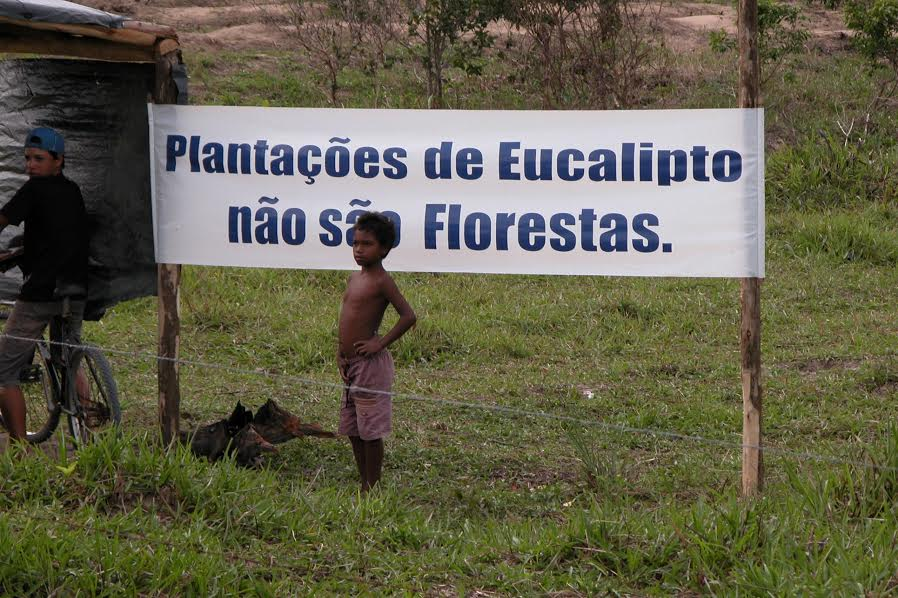 Brazil Groups Denounce Industrial Forestry on Opening Day of IUFRO World Congress
