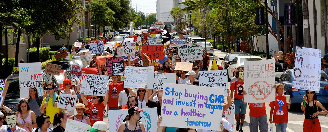 Threat of GE Eucalyptus Topic at Tomorrow's March Against Monsanto Event in Miami