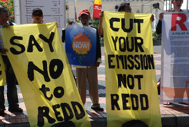 The World Bank Forest Carbon Partnership Facility's Latest REDD Scam