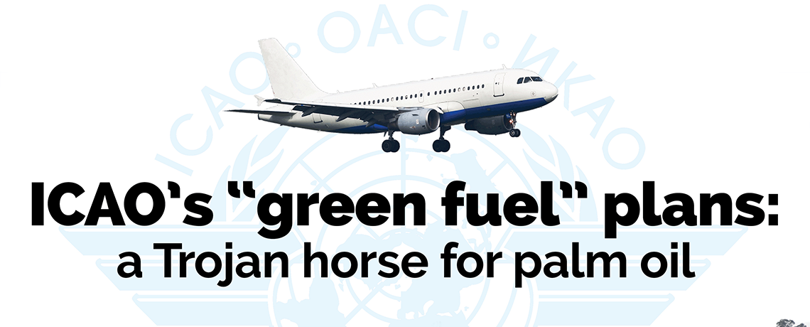 Almost 100 Organisations Worldwide Condemn UN Aviation Agency's Biofuel Plans