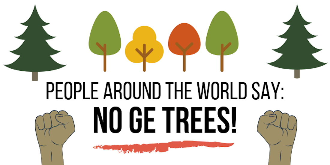 Global Campaign Highlights Worldwide Rejection of Genetically Engineered Trees ahead of Int'l Tree Biotech Conf. in North Carolina