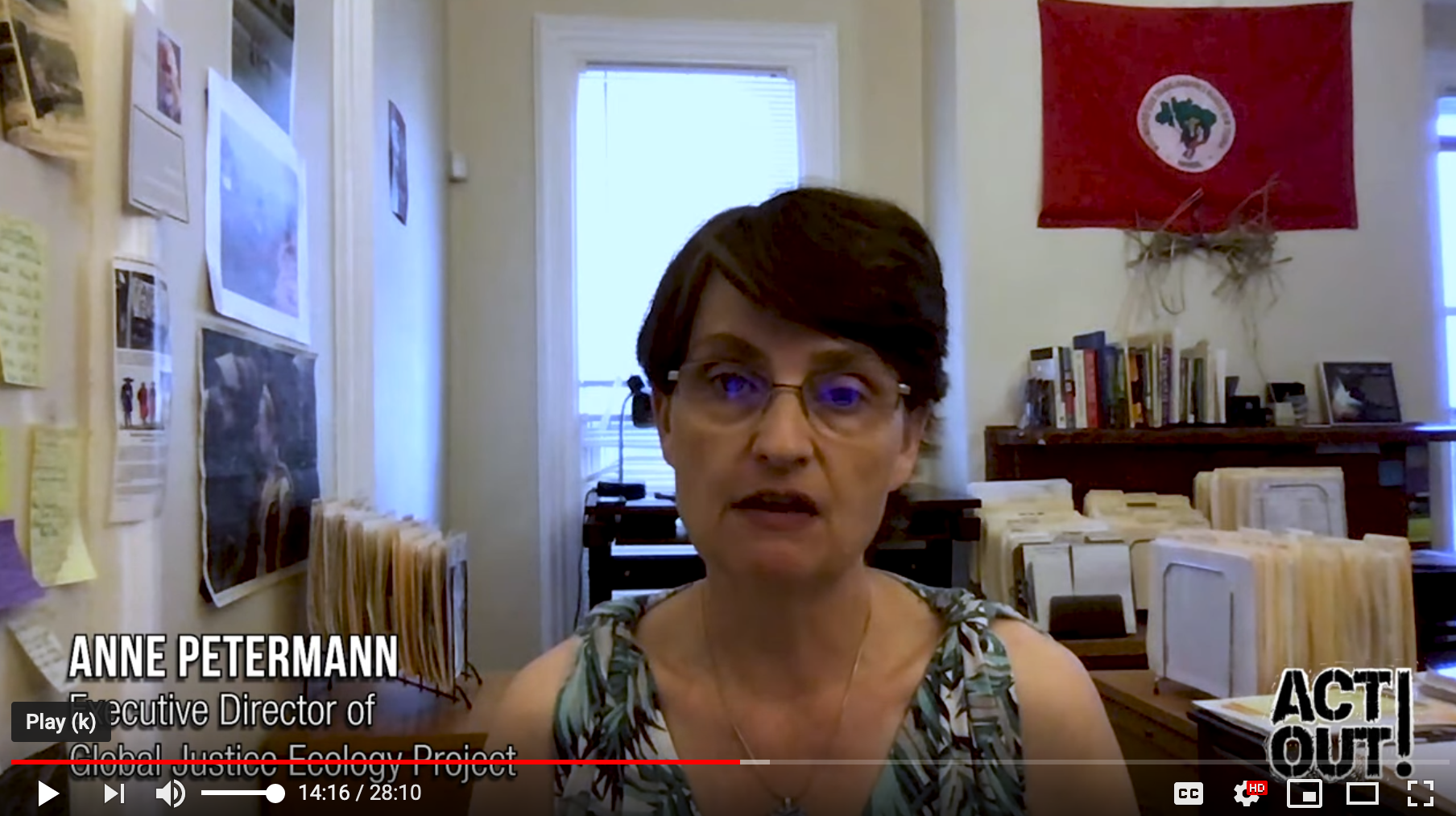 Interview with Exec Dir. Anne Petermann on Climate Change, Deforestation and the Need to Rise Up