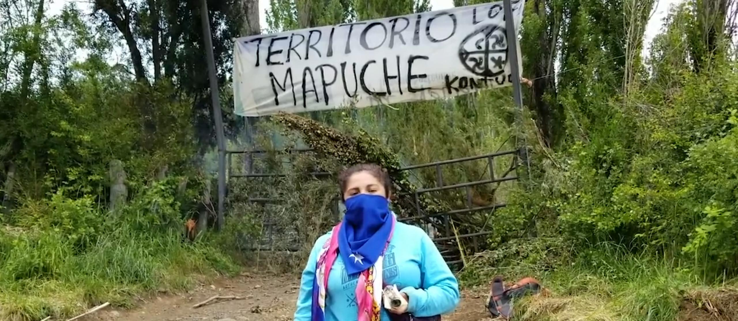 Video: Declaración a la COP25 de comunidades en Chile: no a las soluciones climáticas naturales