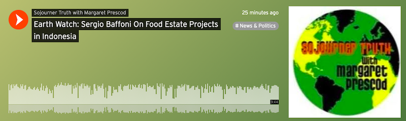 Earth Watch: Sergio Baffoni On Food Estate Projects in Indonesia