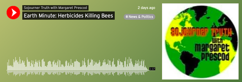 Earth Minute: Herbicides Killing Bees