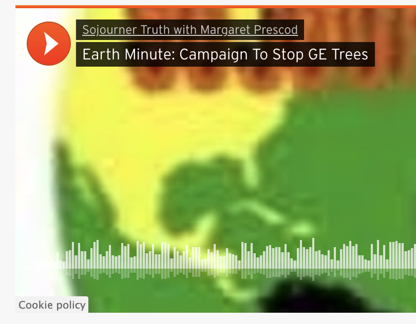 Earth Minute: GE Trees – No Solution to Climate Change