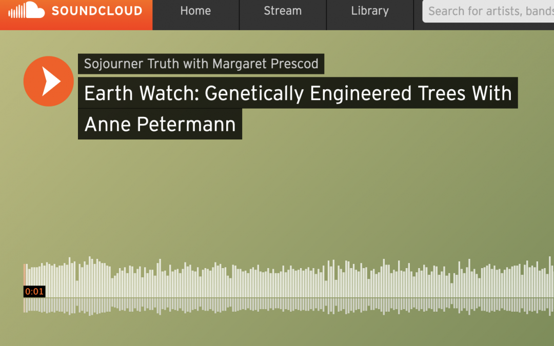 Earth Watch: Climate Crisis Driving Fake Techno-Fixes like Genetically Engineered Trees