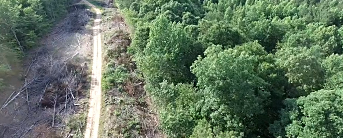 WATCH: Atlantic Coast Pipeline Project Threatens Thousands of Acres, Waterbodies and National Forests