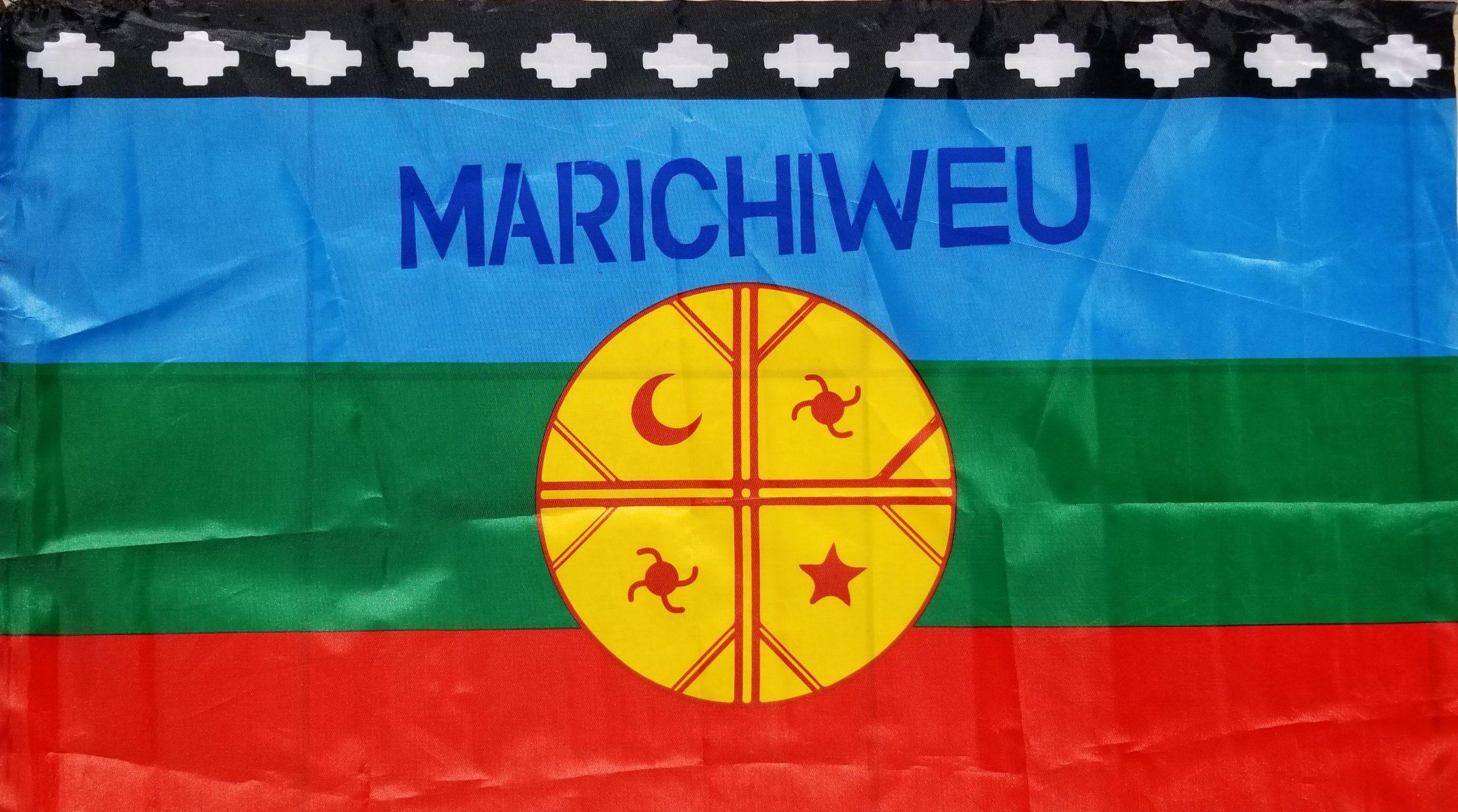 Video: Mapuche Lonko Alberto Curamil Freed!