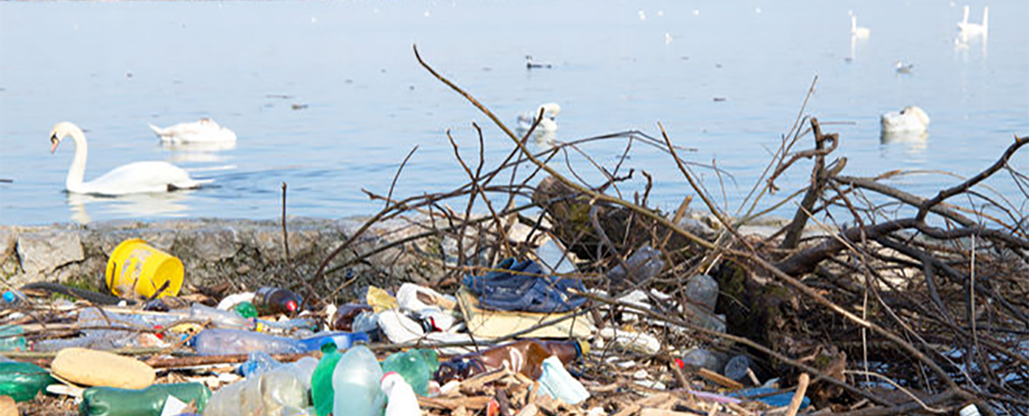 Drowning in Plastic: 25 Million Tons of Trash Polluting Beaches, Oceans