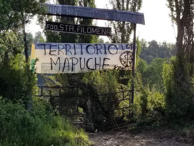 Protester Pablo Machant killed in logging protest in Chile