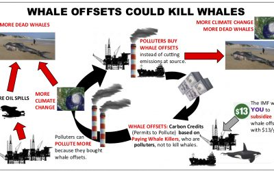 SAVE THE WHALES… from the carbon market!